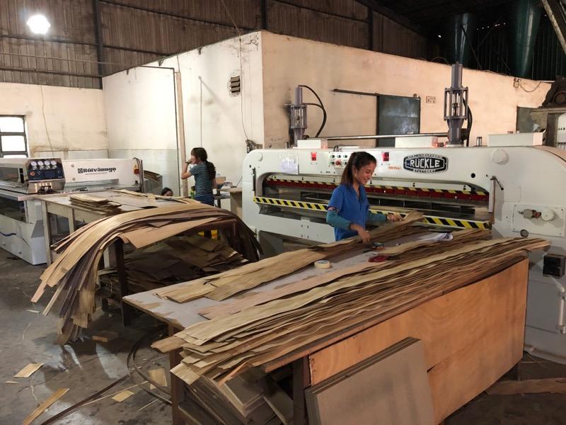 Custom Kitchen Cabinet Manufacturer in Vietnam